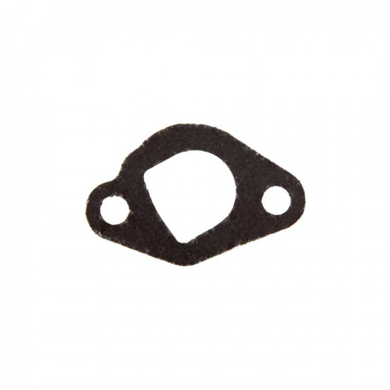 Exhaust Gasket (PPPW-3100)