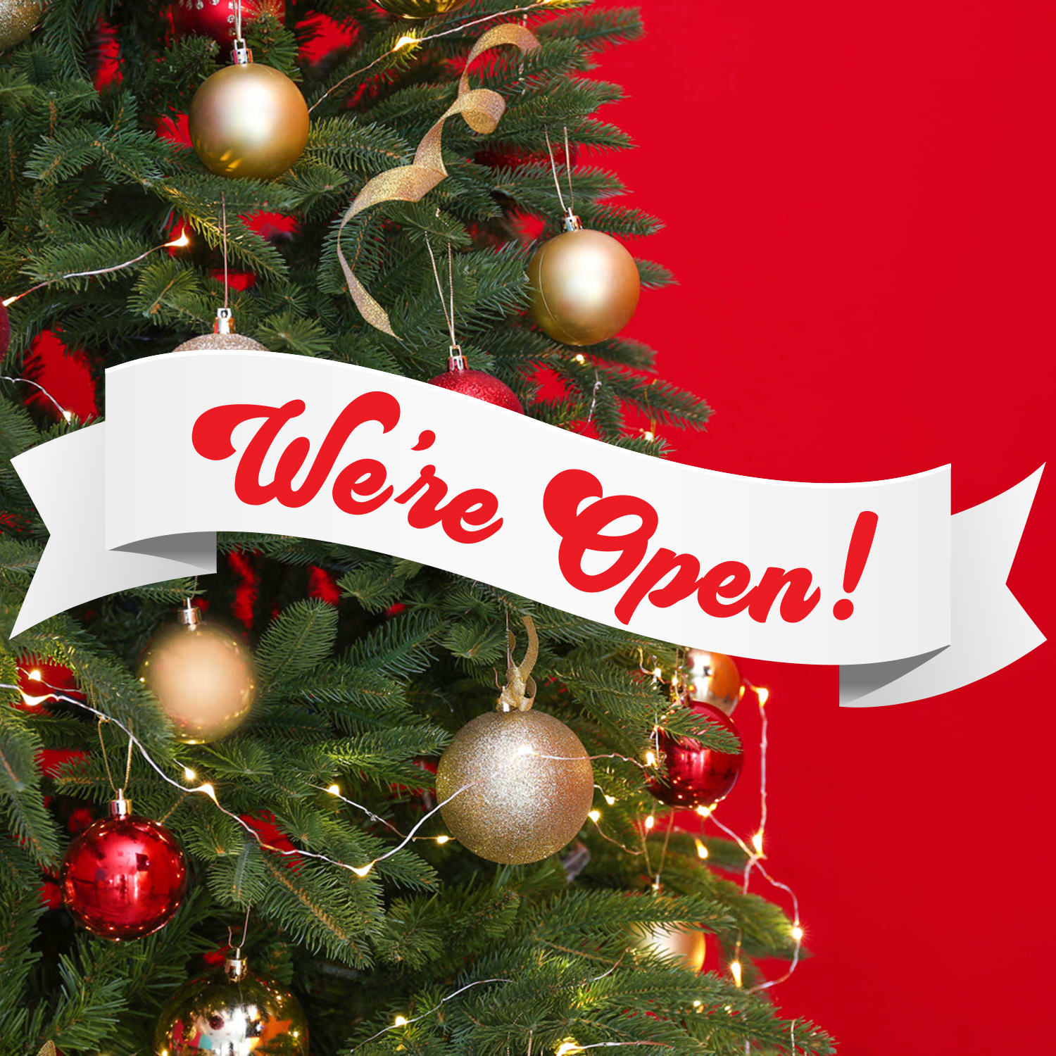 Christmas Delivery and Opening Times!